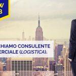 Offerta lavoro: Commerciale nel settore Logistica